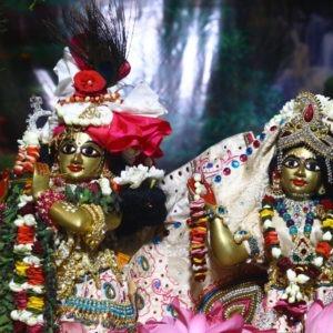 Sri Vigraha Nitya Seva